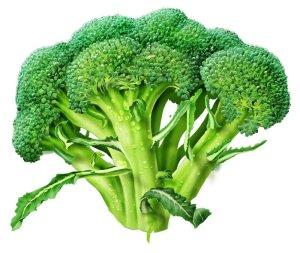 Broccolibild