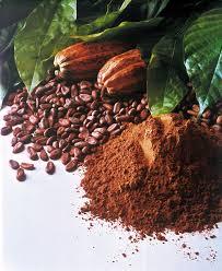 kakao - hjärnfunktion