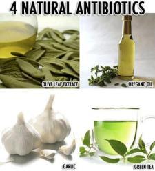 naturlig antibiotika