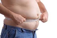 fetma och alzheimers