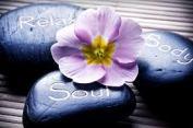 hypnos för terapeuter