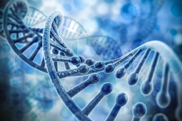 dejtingsajt baserad på DNA ansluta combo amp till skåpet